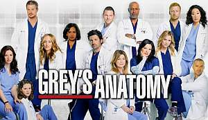 Купить сериал Анатомия страсти (Анатомия Грей) / Grey's Anatomy 13 сезонов, 333 серии